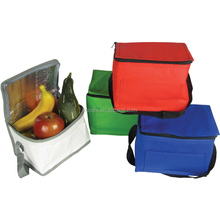 Insulated igloo fridge cooler bag