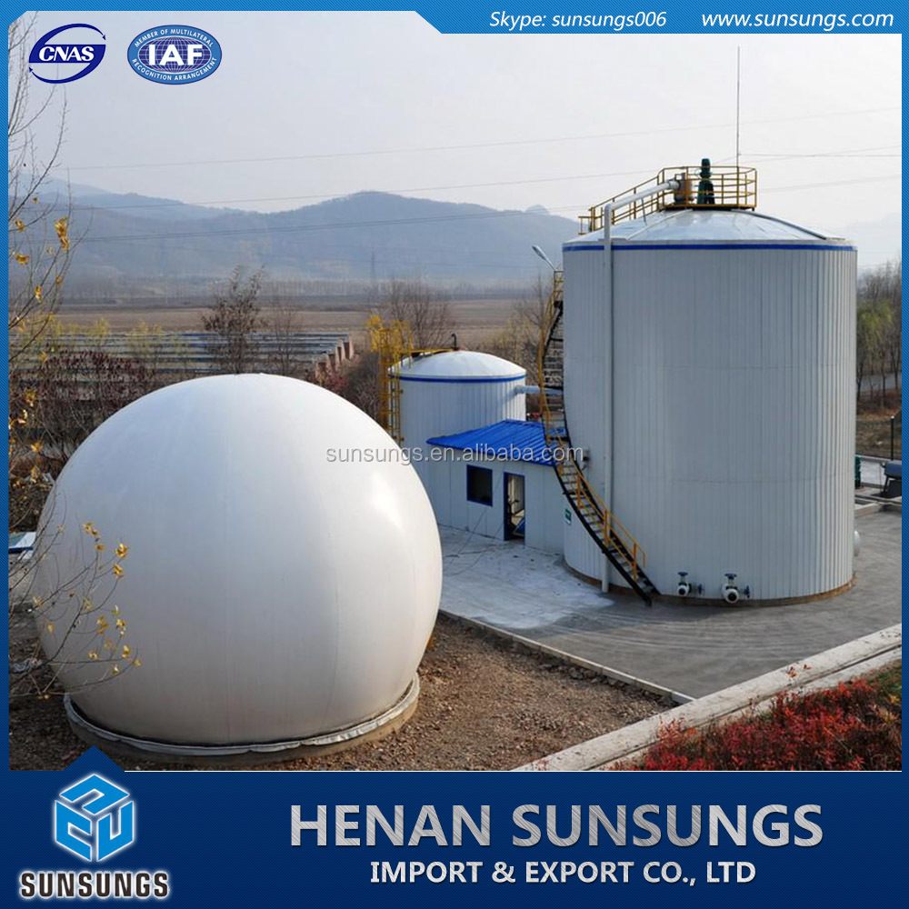Biogas unit for biogas electricity production