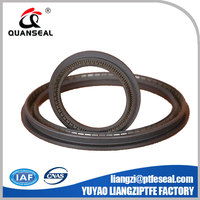 High Performance Spring loaded lip seals