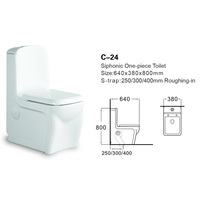 C-24 Chinese Factory Supplier Electric Toilet Seat One Piece Bidet Toilet Seat Western Toilet Standard Size