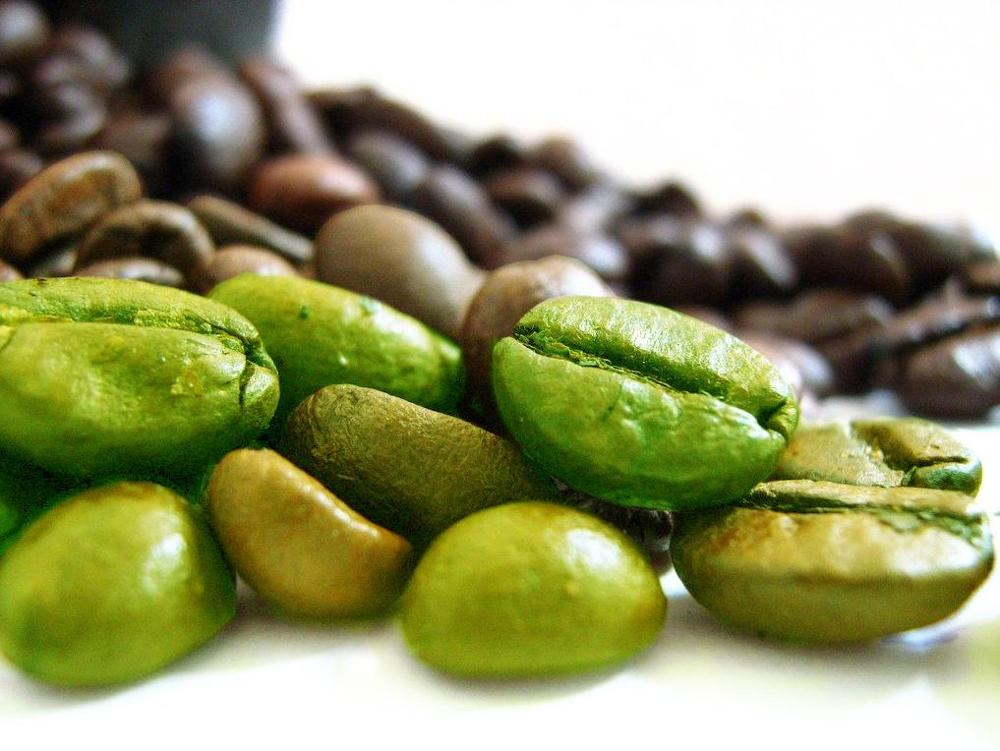 Top quality 50% chlorogenic acid natural green coffee bean extract from cGMP manufacturer