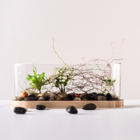 Stylish Clear Glass Flowers Vase Terrarium for Micro Landscape Fairy Garden Fish Pot
