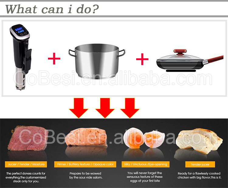 Sous Vide machine For Domestic Slow Cooker With Ipx 7 Water Proof