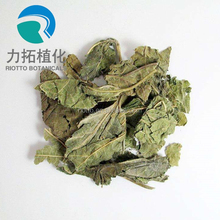 High quality white mulberry leaf extract powder