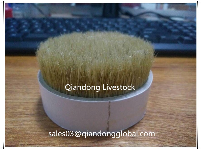 Stiff Pure Bristle Pig Hair White Color For Brush