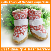 JML Wholesale low price red/coffee fashion leisure pet dog sports shoes
