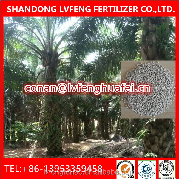 Compound Granular Fertilizer NPK15-15-10+TE Special for Seedling Oil Palm