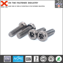 Economic and reliable special security screw for certificates
