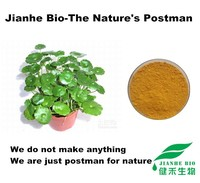 100% Pure centella asiatica extract Powder Triterpenes 10%-80% Asiaticoside 10%-90% HPLC