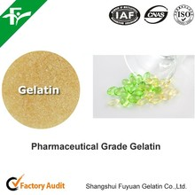 pharmaceutical grade gelatin powder for capsules