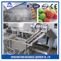 Hot cost-effcience leaf vegetable washer/home appliance fruit and vegetable washer