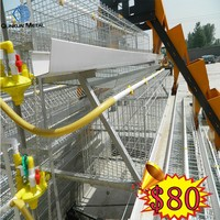 Best selling products automatic layer chicken run