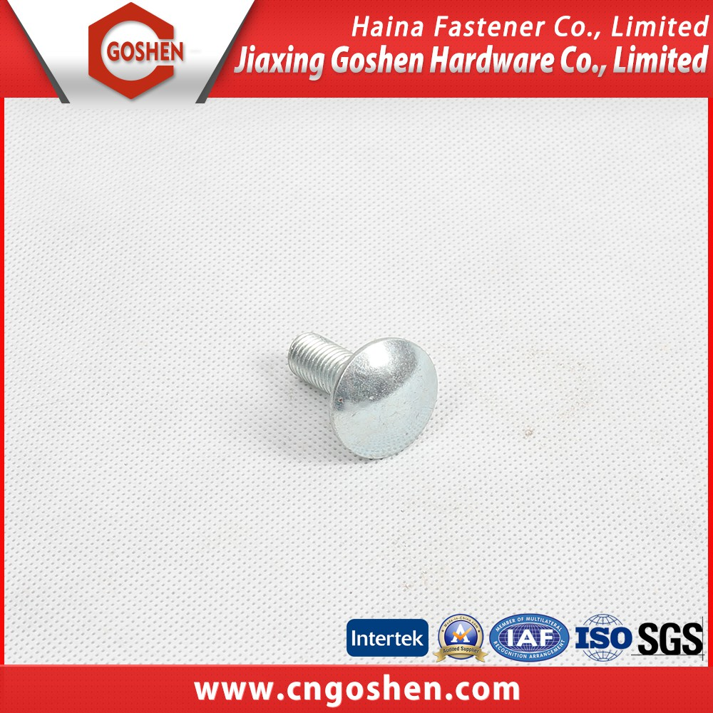 High quality ROHS/SGS carriage bolt with wide head