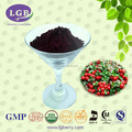 Wild Lingonberry Extract powder (5%-70% Anthocyanin)/organic lingonberry