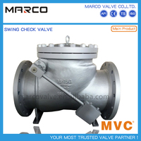 Reliable performance iron or steel material industrial one way non return check valve