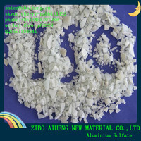 Industrial Al2(so4)3 17% Alum Cas 10043-01-3 15.8% Water Treatment 16% Flake Aluminium Sulfate Price