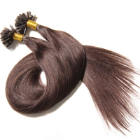 Companies Looking For Distributors Keratin Fusion Tip 100% Remy Human Hair Extension