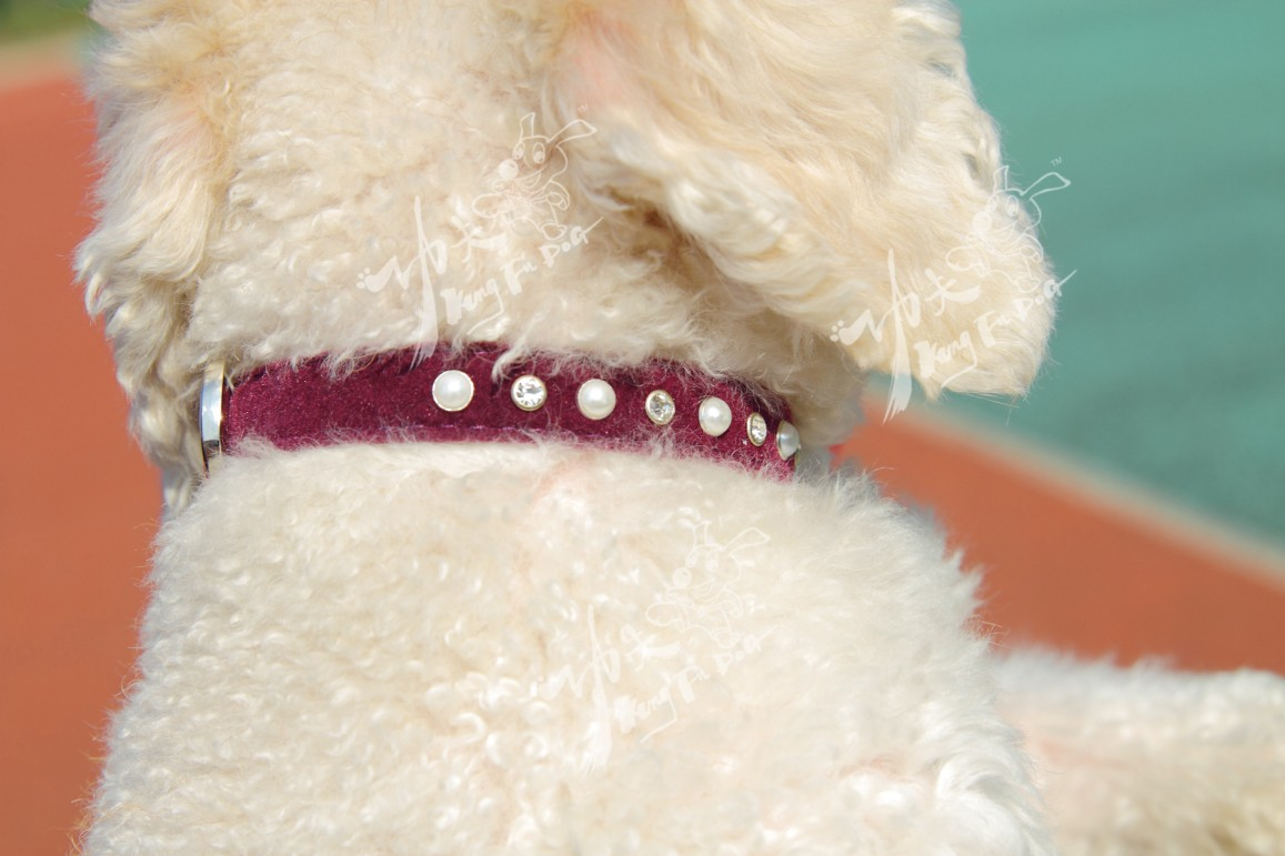 stylish delicate Kung Fu Dog brand one row pearl diamond A flocked fabric pet dog collar pet lead dog leash