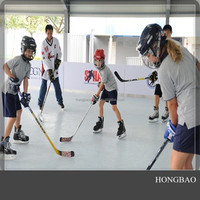 uhmwpe ice rink/fake plastic ice rinks/Portable skating plate