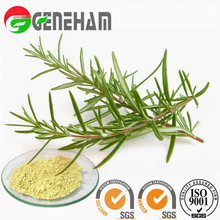 feed supplement/ Feed Preservative Raw Material/ Rosemary Extract