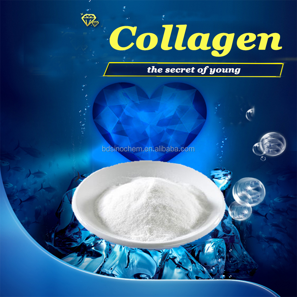 12 years Experience Export Pharmaceutical Grade Fish/beef Protein Collagen/pure collagen powder