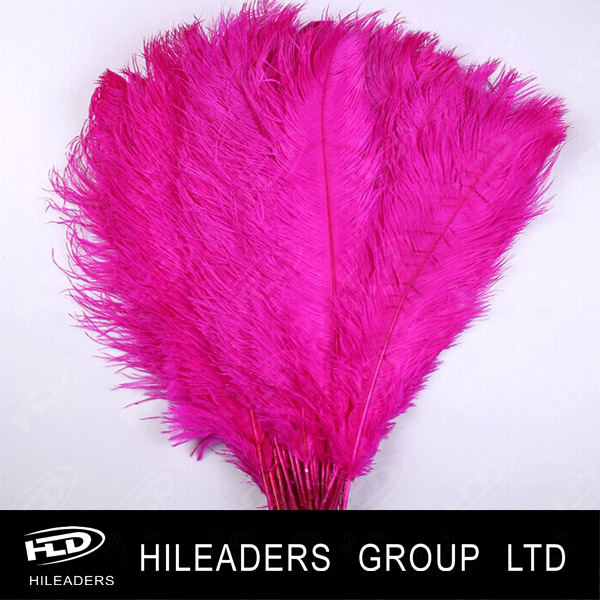Show Dance Costume Used Deyed Ostrich Feather