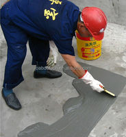 Construction Waterproofing Coating