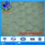 hexagonal wire netting / chicken wire ( Professional Factory)