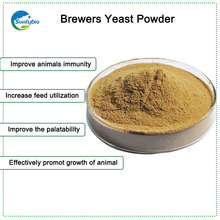 Yeast Saccharomyces Cerevisiae For Livestocks Feed