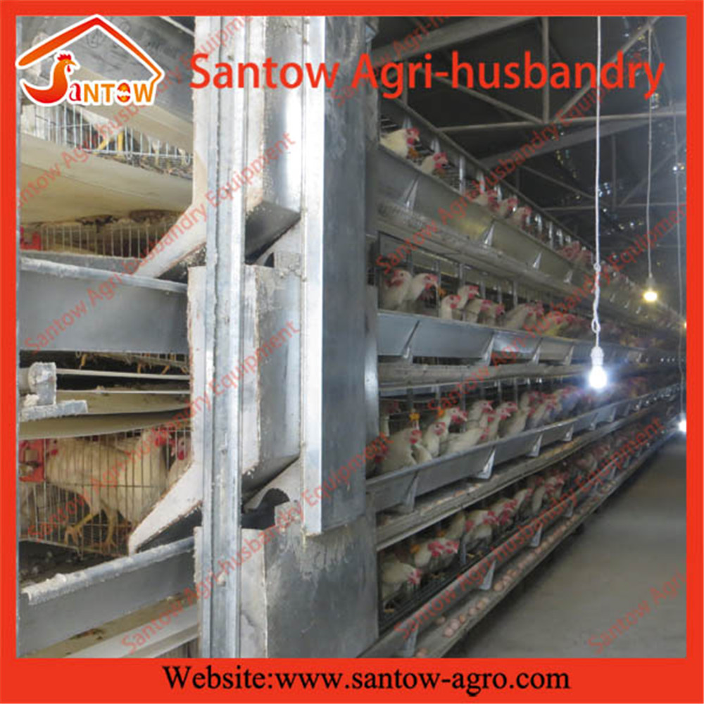 automatic controlled poultry farm shed