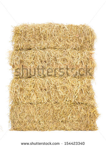 live stock feed baled paddy straw