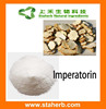 Manufacturer Supplier Angelica Root Extract Imperatorin