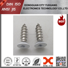 white head painted decorative screw