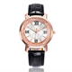 Fashion simple Flowing sand quartz watch for women