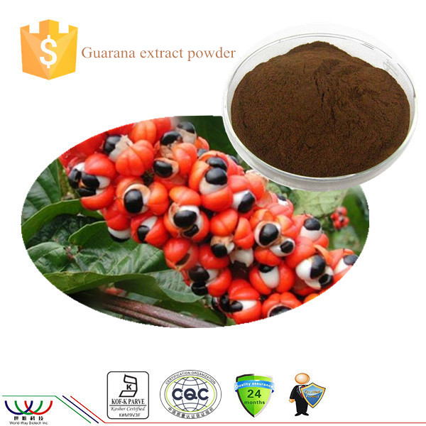 Natural and pure 20% Caffeine guarana extract powder