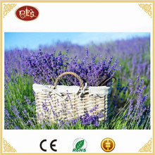 Beautifu Lavender LED canvas painting,Light Up Home Decoration