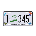 America La La Land Custom Car License Plate Souvenir Items