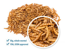 High Protein Dried Mealworms Poultry Feed Animal Feed