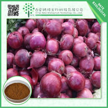 Factory supply low price Onion Extract 80% Quercetin from China supply