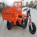 Cargo tricycle/ Tricycle for sale in Philippines/ 3 wheeler hot sale in Philippines