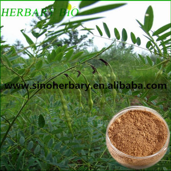 2017 Natural plant extract Astragalus extract polysaccharide 40% for herbal cure
