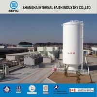 2016 Well Designed LNG Gas Storage Tank Container