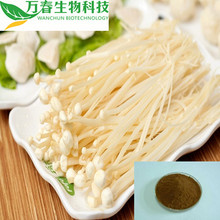 Factory supply herbal medicine flammulina velutipes extract
