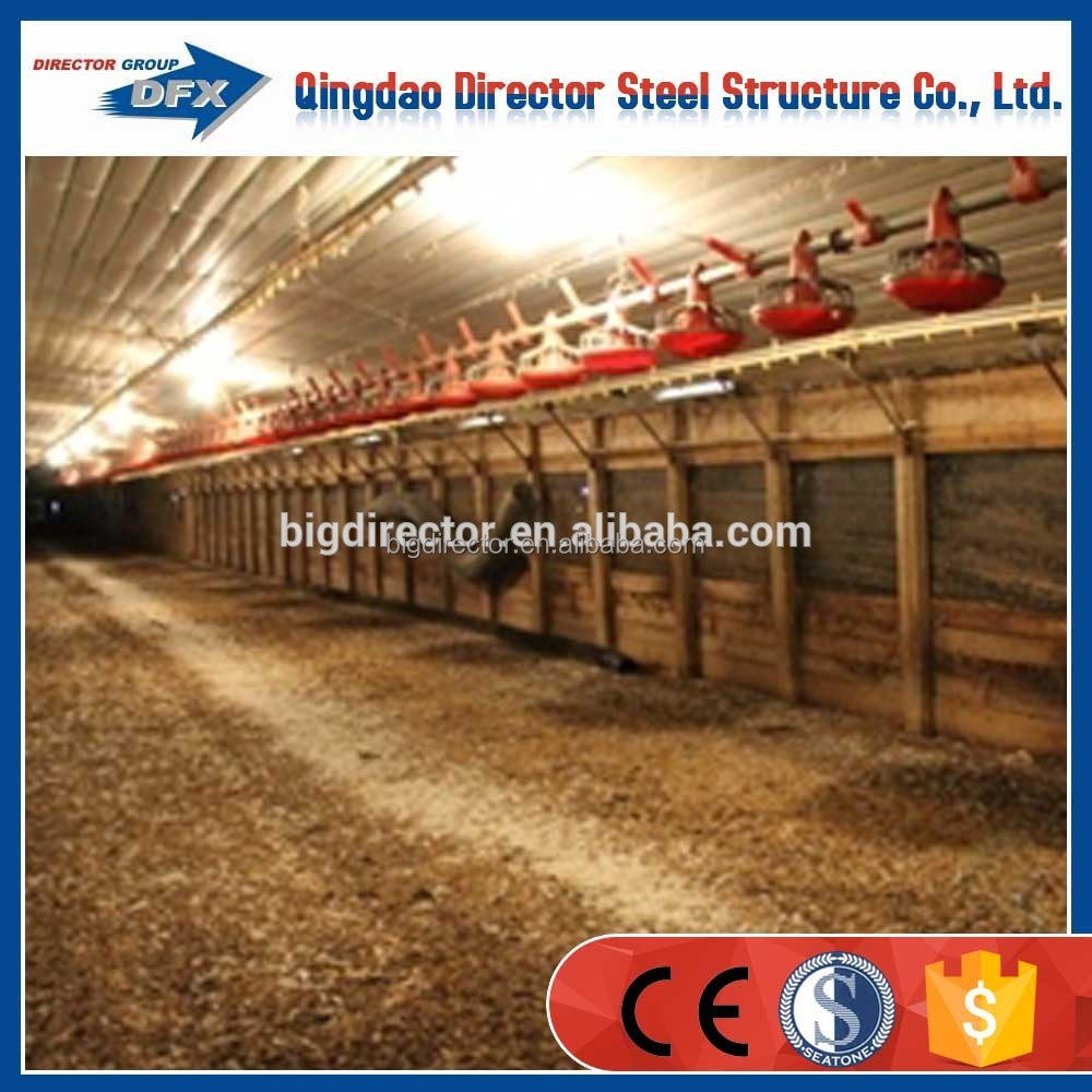low cost prefab steel chicken house building with poultry equipment