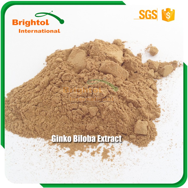 High quality Ginkgo Biloba extract