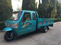 800cc mini truck cargo tricycle