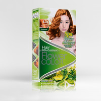 Permanent Natural Herbal Touch Color Salon Hair Dye