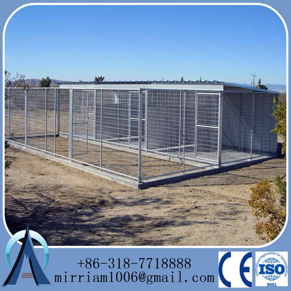 Anping factory large Dog Cage & dog kennel with the cheap price