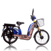 Green power electric bike loading king electric bicycle with basket