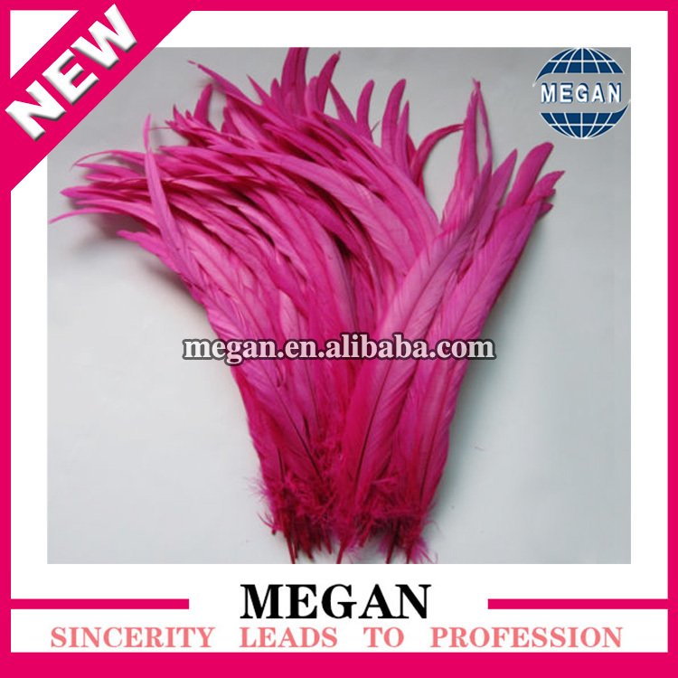 Factory wholesale prime quality dyed rooster tail feather